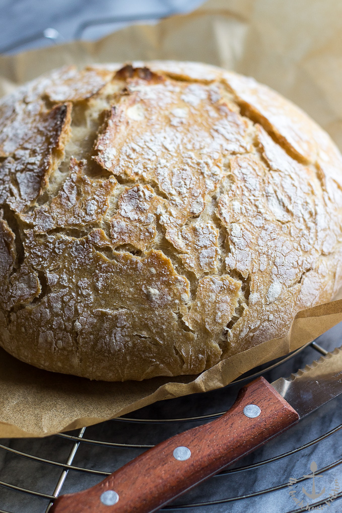 Rustic No-Knead Bread