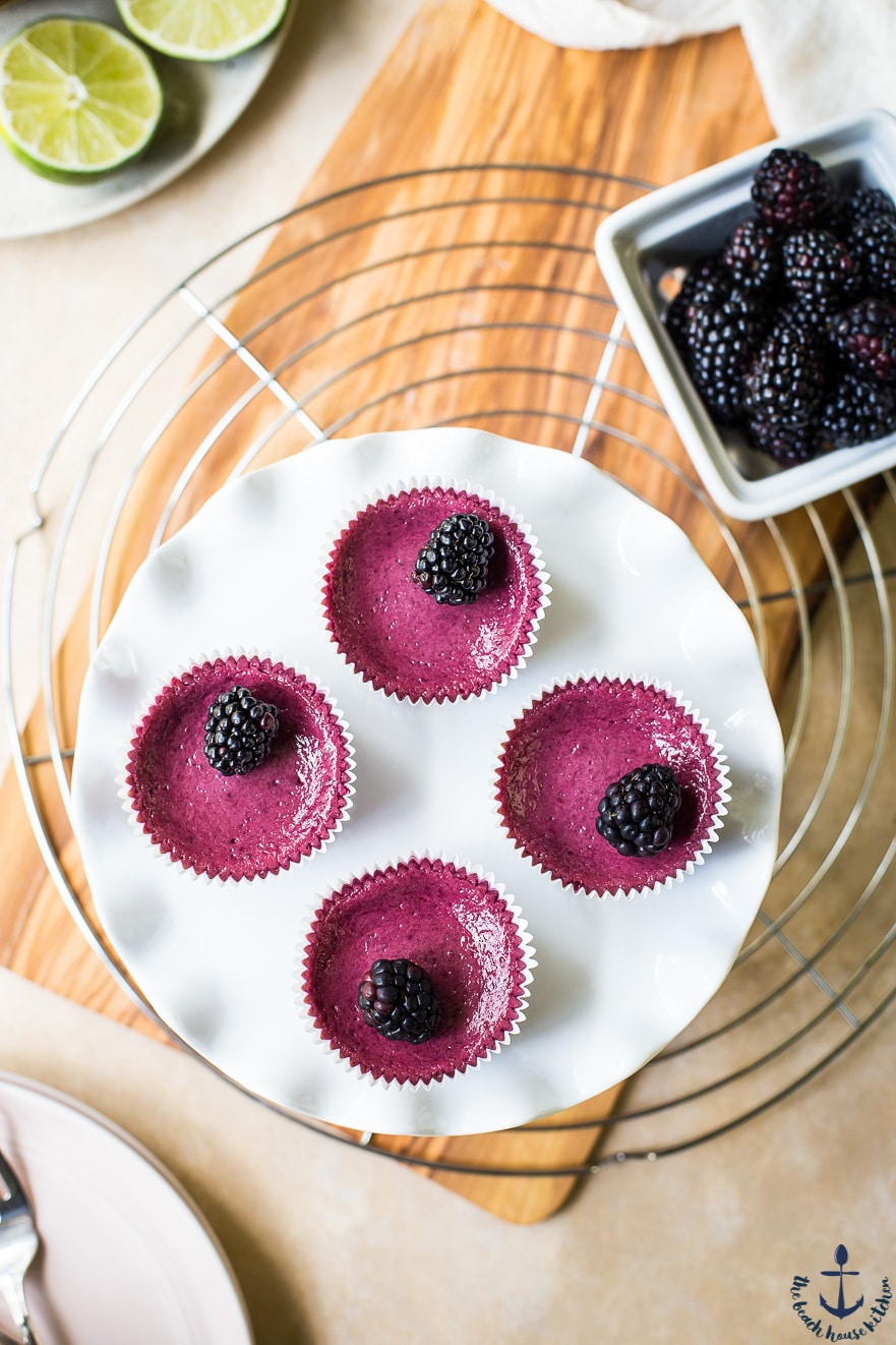 Mini Blackberry Silk Pies with Gingersnap Crust