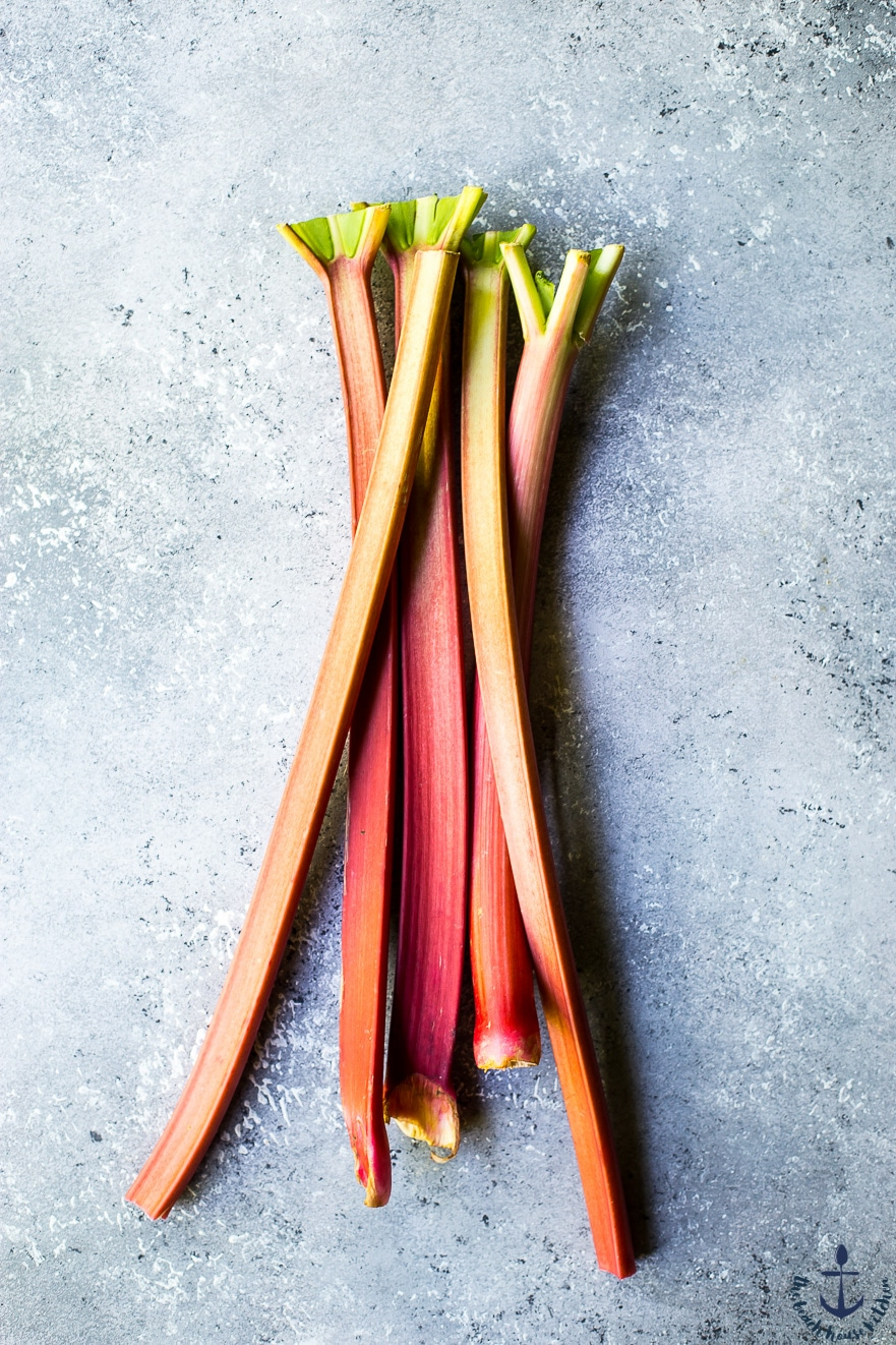 Bunch of rhubarb stalks on a gray background