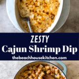 Cajun Shrimp Dip long Pinterest pin