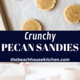 Pecan Sandies long Pinterest pin