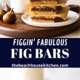Figgin' Fabulous Fig Bars long Pinterest pin